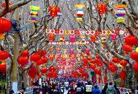"""流动的""""非遗""""舞台,""""元宵行街会""""惊艳上海街头"""