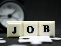 疫情可能让企业招聘意愿下降、失业人数增加?上海人社局正抓紧研究应对举措