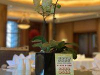 餐厅可点半份菜、光盘或打包剩菜免服务费,上海旅游行业推行餐饮节约