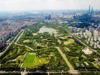 重磅文件出炉,上海明确28项重点改革举措,到2025年会发生这些变化