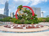 """上海在街头摆出1239万盆花卉,人民广场""""飞""""来两只凤凰,都为了这件事"""
