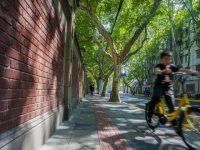 """上海市中心两条著名弄堂相互打通了,公共地界谁来管?区里""""未雨绸缪""""了两年"""