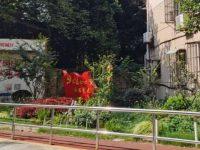 """小区太小没人管、物业不给力怎么办?上海这个街道探索""""小小区""""合并升级版"""
