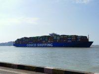 迄今载运第三届进博会最多展品的巨轮抵达洋山港,船上装了这些